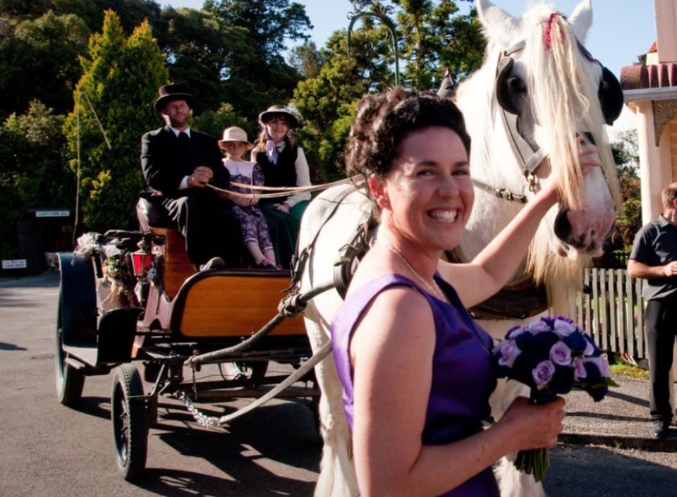 Horse and Cart Wedding